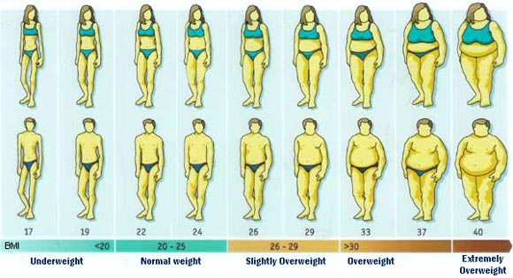 Indice di Massa Corporeo Calcolo