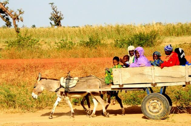 Contadini Africa Mali