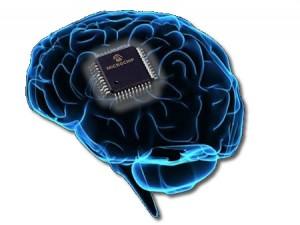Organi e Microchip